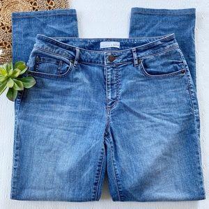 Ann Taylor Loft Jeans Straight Leg High Rise 29